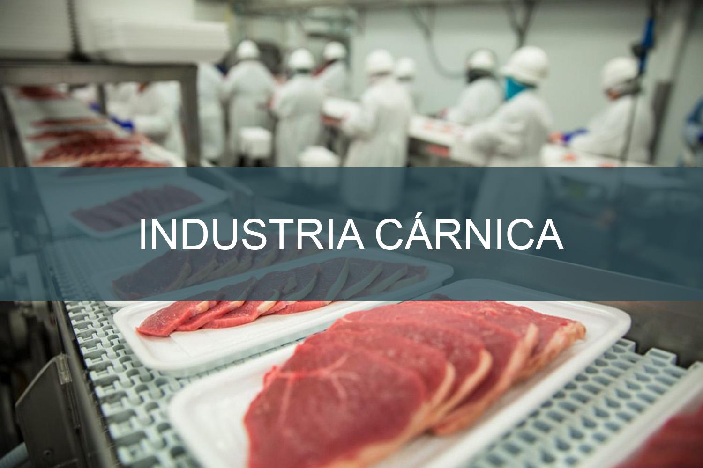 Industria-cárnica